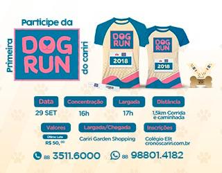 Dog Run Lateral