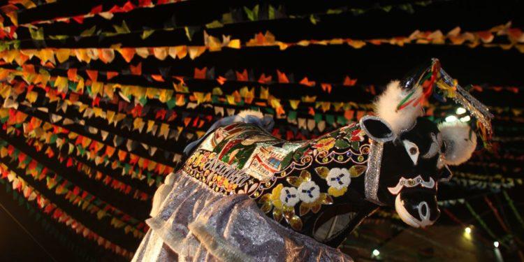 Bumba Meu Boi pode se tornar patrimônio imaterial da humanidade
