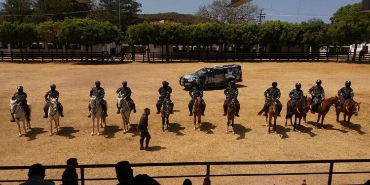 Cariri ganha Cavalaria da Polícia Militar; veja vídeo